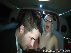 Sexparty with drunk sluts sucking cocks