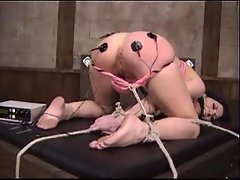 Lesdom bondage and pain with electro shock