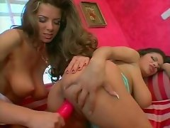Two shaved pussies on curvy Euro girls and use toys