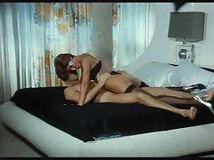 Perky tit classic porn slut fucked good