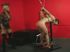 Milf brunette learns the obedience through initiation by maxine x