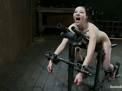 Cute librarian gets bound, fucked by a machine and ass hooked!...
