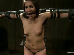 Fucked hard, fucked fast. Jade is bent over, strung up, vibed,...