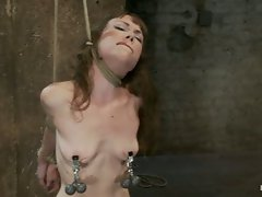 Girl next door suffers the hardest hour on the internet. The Hogtied...