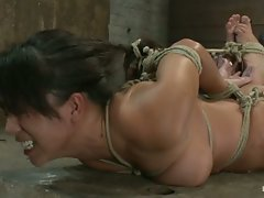 Sexy Hawaiian is brutally hogtied,  elbows bound together, hair tied...