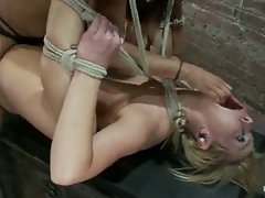 In the final scene of the July live show Tara is bound and spread,...