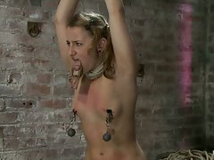 Tiny girl in pig tails and thigh highs, bound and helpless on a...