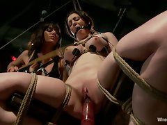 Gia DiMarco breaks in a newbie with the violet wand, titty torment,...