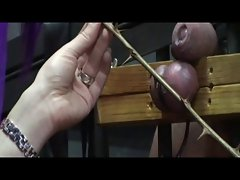 Serious Phallus And Ball Torture