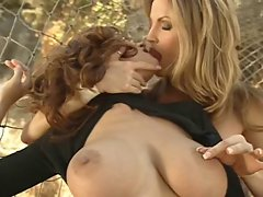 Wildcat Lesbos - Sensual Breasts
