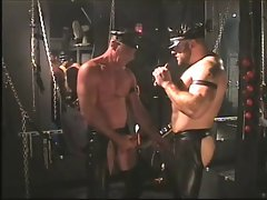 Dungeon leather bears