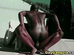 Black gay studs suck fuck and cummed