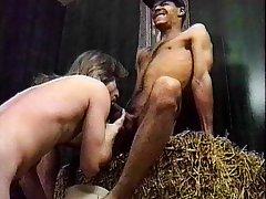 In the sex barn