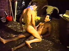 Hot studs having sex at the stable