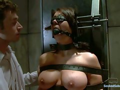 Restrained slave brunette Beverly Hills gets her big tits and