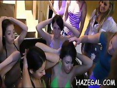 Lesbians caressing on cam