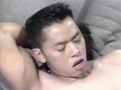 (classic) asian with a white bushy lad