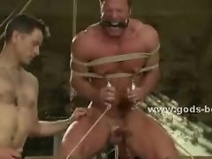 Strong chest of a gay is bound in thick rope while masters use cl