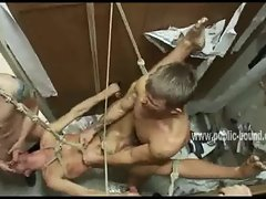 Gay boy Randall suspended in ropes fucked in the mouth in deepthr