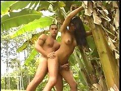 Tropical shemale fun