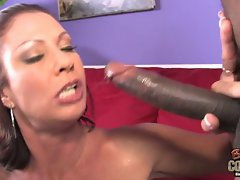 White mamma Vanessa Videl used by ebony monster phallus