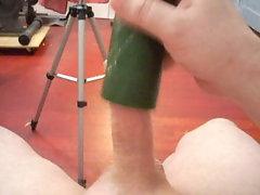 cucumber cum