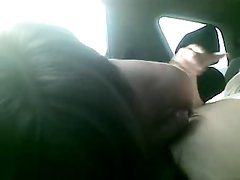Amateur blowjob in the car