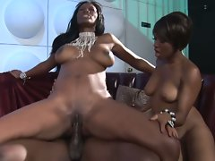 Two black bitches share a big black cock