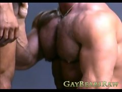 Huge muscle stud sucking on dick