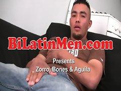 Zorro, Aguila, &amp_ Bones
