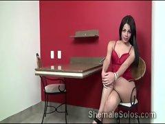 Tasty shemale brunette Bruna Castro models hot underwear in teasing solo