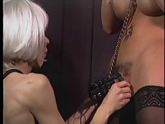 Transsexual gets gagged and pecker bound