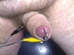 Electrocuting cock