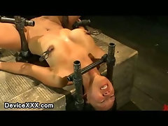 Asian anal toyed while strapped to a metal horse