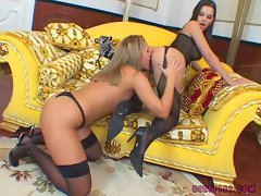 Eve Angel laid her girlfriend on the couch and started some tongue action