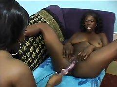 Fat titty black lesbians have some good sex