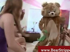 Cfnm bear strippers in wild striptease