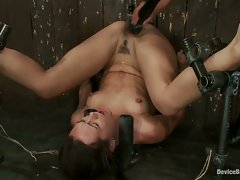 See this hot and dripping cutie get pounded until she screams