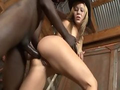 Hot Blonde Interracial Anal Sex - Download Link : http://goo.gl/HepkM