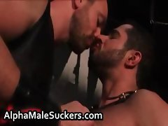 Hardcore gay fucking and sucking porn part4