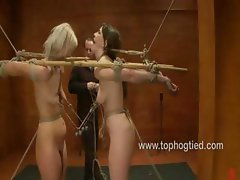 Dana and Tara are connected in bondage