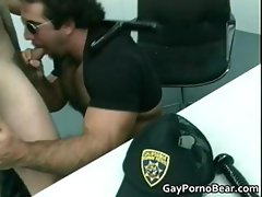 Gratis queer bears suck and fuck rigid part4