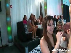 Slut at orgy eating stripper's schlong