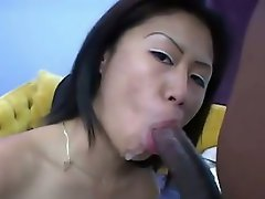 Asia This little Asian hottie, who happens to be named Asia, will do...