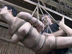 she is strung up in a rough strappado and whipped and caned without...