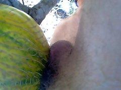 Fuck a Melon III