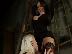 Woman seduces shemale - Translesbian