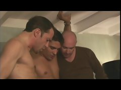 A wonderfull blowjob scene in a hotel room