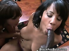 Black Girls With Nice Asses Tag Team Sucking Cock
