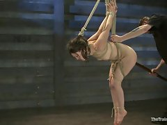 Rampant babe is tied up & toy fucked up her clunge
